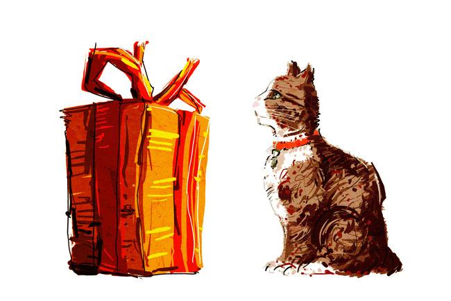 Le chat cadeau