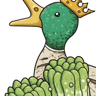 Super canard